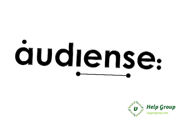 Audiense User Review, Preisgestaltung & beliebte Alternativen