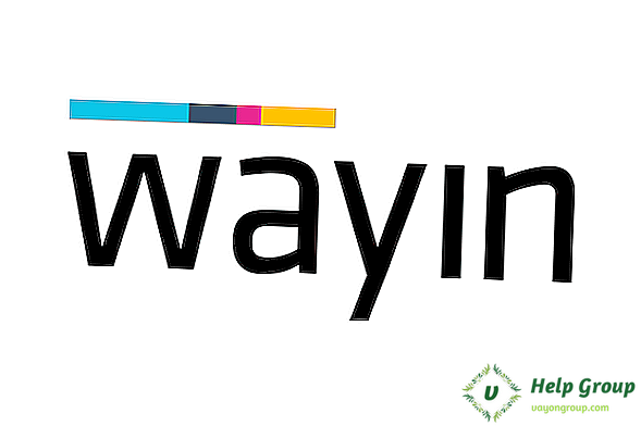 Wayin User Review, Preisgestaltung & beliebte Alternativen